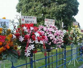 Flowers_2