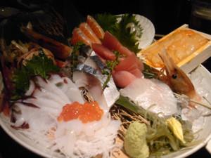 Sashimi2_r1