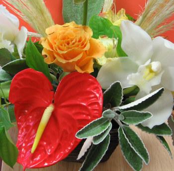 Flower7_1